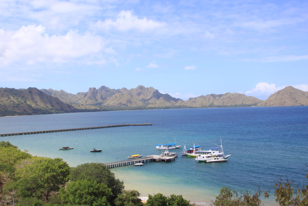 Only day visits are allowed to Komodo Island and all tourists arrive by boat, either on live-aboards or on day trips out of Labuan Bajo on Flores. A view of the jetty and rugged sav